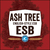 Mini confluence ash tree esb 2