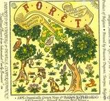 Brasserie Dupont Foret beer