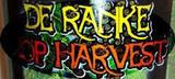 De Ranke Hop Harvest beer