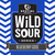 Mini destihl wild sour series blueberry gose 6