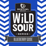 Destihl Wild Sour Series: Blueberry Gose beer