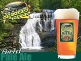 Appalachian Purist Pale Ale beer