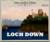 Mini arcadia loch down scotch ale 4