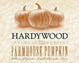 Hardywood Farmhouse Pumpkin beer