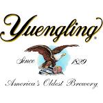 Yuengling Tall Boys beer