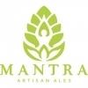 Mantra Rhuberry Berliner Weisse beer