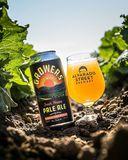 Alvarado Street Grower's Pale beer