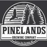 Pinelands Blueberry Ale beer