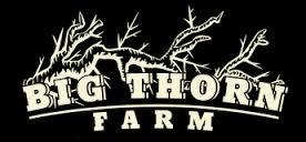 Big Thorn Roasted Hickory beer Label Full Size