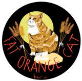 Fat Orange Cat Aftershock beer