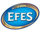 Efes Pilsner Beer