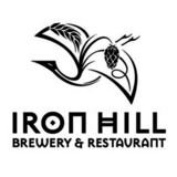 Iron Hill McMaster Wee Heavy Scotch Ale Beer