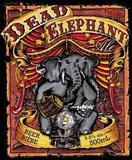Railway City Dead Elephant Ale beer