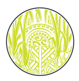 Maui Brewing Co./The Lost Abbey Lemongrass Saison beer