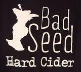 Bad Seed Ginga Cider Beer