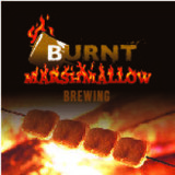 Burnt Marshmallow Saros-145 ECLIPSE Belgian Dubbel beer