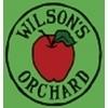 Wilsons Orchard Peach Fizz beer