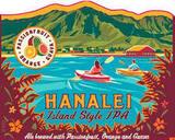 Kona Hanalei Island Style IPA Beer