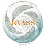Jester King Kvass beer