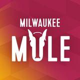 Third Space Milwaukee Mule Beer
