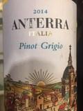 Anterra Pinot Grigio Beer