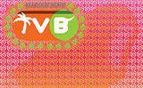 Bolero Snort TVB Tropical Cream Pop IPA beer