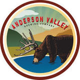Anderson Valley G & T Gose beer