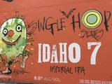 Flying Dog Single Hop Idaho Beer