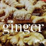 Island to Island Brooklyn Ginger Brew beer