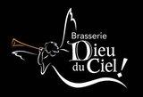 Brasserie Dieu Du Ceil The Grande Noirceur beer