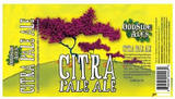 Odd Side Wet Hopped Citra Pale Ale beer