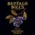 Mini buffalo bill s blueberry oatmeal stout 12