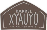 Baladin Xyauyù Barrel beer