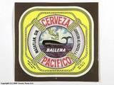 Pacifico Ballena beer