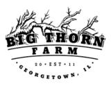 Big Thorn Mad Coffee Porter Beer
