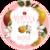 Mini virtue rose 2