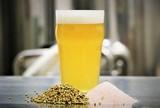 Oracle Brewing - Gose-uhh Beer