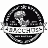Brewery at Bacchus Enclave Farmhouse Lager beer