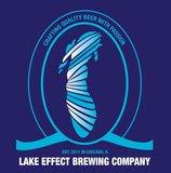 Lake Effect Snow Beer