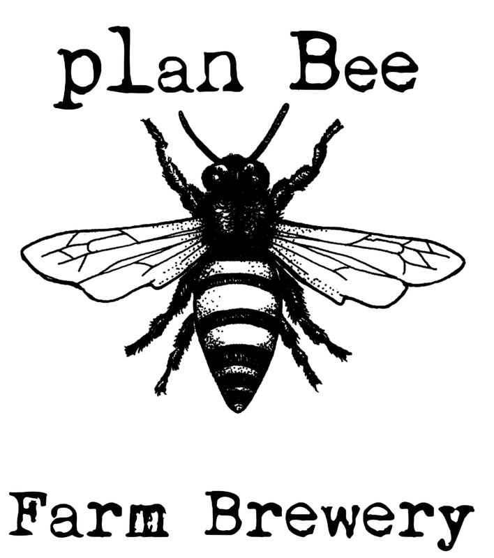 Plan Bee Rainbow Carrot Ginger beer Label Full Size