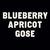 Mini five boroughs blueberry apricot gose 1