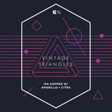 Long Live Vintage Triangles Beer
