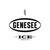 Mini genesee ice 3