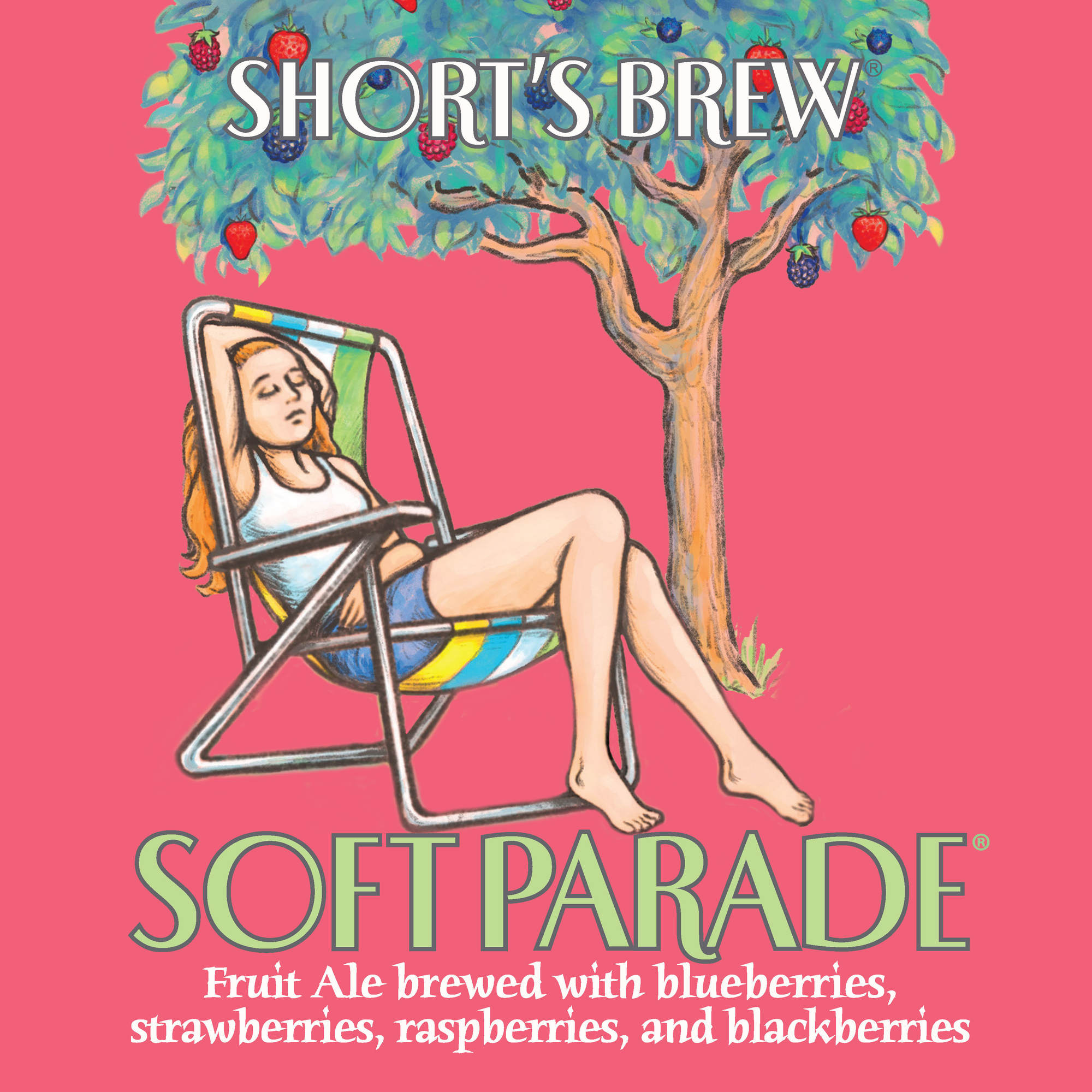 Short's Soft Parade beer Label Full Size