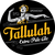 Mini speakeasy tallulah extra pale ale 1