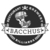 Mini brewery at bacchus james baxter milk stout w coffee nitro 1