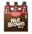 Mini ithaca nut brown ale 2