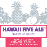 DESTIHL Hawaii Five Ale beer