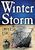 Mini heavy seas winter storm 5