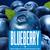 Mini wachusett blueberry ale 7